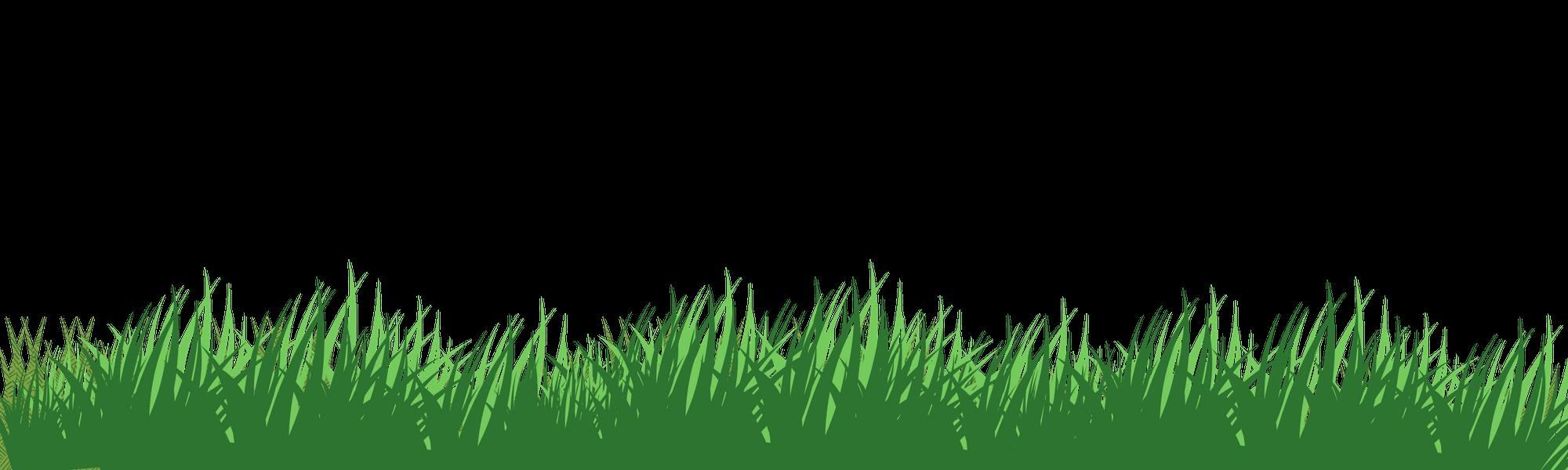 Grass Background Tony Franco